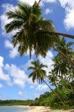 παράδεισος ονείρου παρ&al στοκ φωτογραφία με δικαίωμα ελεύθερης χρήσης