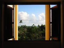 παράδεισος στο παράθυρο Στοκ φωτογραφία με δικαίωμα ελεύθερης χρήσης