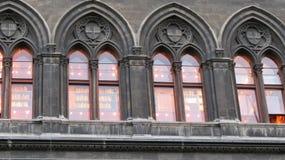 Παράθυρα βιβλιοθηκών της Βιέννης Στοκ Φωτογραφία