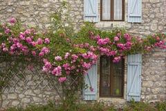 Παράθυρα και τριαντάφυλλα Στοκ φωτογραφία με δικαίωμα ελεύθερης χρήσης
