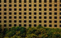 Παράθυρα πέρα από τα δέντρα Στοκ Εικόνα