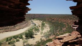 Παράθυρο Αυστραλία φύσης απόθεμα βίντεο