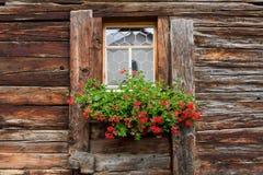 παράθυρο γερανιών διακοσμήσεων που μαραίνεται Στοκ φωτογραφία με δικαίωμα ελεύθερης χρήσης