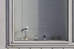 Παράθυρο καλυβών παραλιών Στοκ Εικόνες