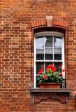 παράθυρο κιβωτίων Στοκ Εικόνες