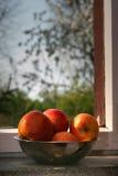 Παράθυρο μήλων Στοκ φωτογραφία με δικαίωμα ελεύθερης χρήσης