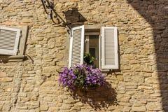 παράθυρο με τα άσπρα παραθυρόφυλλα και τη φούξια πετούνια Στοκ Εικόνες