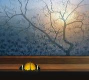 Παράθυρο με την πεταλούδα και δέντρο για το παράθυρο Στοκ φωτογραφία με δικαίωμα ελεύθερης χρήσης