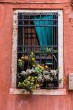 Παράθυρο με το λουλούδι Στοκ φωτογραφία με δικαίωμα ελεύθερης χρήσης