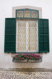 παράθυρο λουλουδιών Στοκ Εικόνες