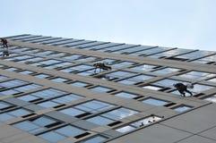 παράθυρο πλυντηρίων της Νέ&alph Στοκ φωτογραφίες με δικαίωμα ελεύθερης χρήσης
