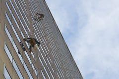 παράθυρο πλυντηρίων Στοκ Φωτογραφία