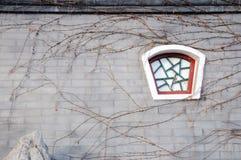 Παράθυρο της Κίνας Στοκ Εικόνες