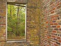παράθυρο φύσεων Στοκ φωτογραφία με δικαίωμα ελεύθερης χρήσης