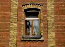 Παράθυρο Στοκ εικόνες με δικαίωμα ελεύθερης χρήσης