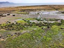 Παράκτια άποψη της θάλασσας και των βουνών σε Lyme REGIS στο Dorset στοκ φωτογραφία με δικαίωμα ελεύθερης χρήσης