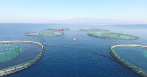 Παράκτια αγροκτήματα ψαριών υδατοκαλλιέργειας Τουρκία απόθεμα βίντεο