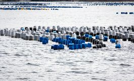 Παράκτια θάλασσα σταδιοδρομίας αλιείας Στοκ εικόνα με δικαίωμα ελεύθερης χρήσης