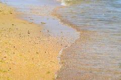 Παράκτια κύματα θάλασσας Νερό της θάλασσας με το φύκι Παράκτια άλγη θάλασσα αποβαθρών μονοπατιών παραλιών Στοκ Φωτογραφία