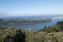 Παράκτιες απόψεις και βράχοι της Νέας Ζηλανδίας δ Υ Στοκ Φωτογραφία