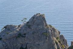 Παράκτιοι βράχοι στα πλαίσια της θάλασσας Στοκ Εικόνα