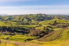 Παράκτιοι λόφοι Καλιφόρνιας Στοκ Φωτογραφία
