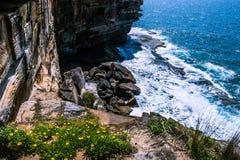 Παράκτιος απότομος βράχος Στοκ εικόνα με δικαίωμα ελεύθερης χρήσης