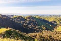 Παράκτιος φυσικός Καλιφόρνιας Στοκ Εικόνες