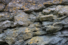 Παράκτιο πρόσωπο βράχου Στοκ Εικόνες