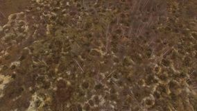 Παράνομη ηλέκτρινη μεταλλεία Συνέπειες του ηλέκτρινου σκαψίματος στο φθινόπωρο φιλμ μικρού μήκους