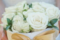 Παράνυμφος που κρατά ένα κιβώτιο των τριαντάφυλλων Αυξήθηκε κιβώτιο Όμορφο δώρο με τα άσπρα τριαντάφυλλα Στοκ Εικόνες