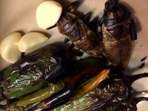 Παράξενα τρόφιμα Στοκ Φωτογραφίες