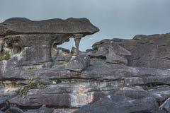 Παράξενοι αρχαίοι βράχοι του tepui Roraima οροπέδιων - Βενεζουέλα, Στοκ Εικόνες