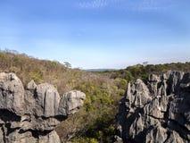 Παράξενοι σχηματισμοί βράχου ασβεστόλιθων - Tsingy, επιφύλαξη Ankarana, Μαδαγασκάρη Στοκ φωτογραφία με δικαίωμα ελεύθερης χρήσης