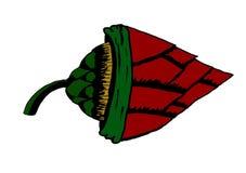 παράξενο λουλούδι Στοκ Εικόνα