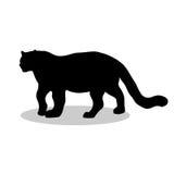 Παράτολμο μαύρο ζώο σκιαγραφιών λεοπαρδάλεων Στοκ εικόνα με δικαίωμα ελεύθερης χρήσης