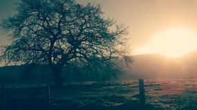 Παράδεισος ηλιοβασιλέματος στοκ φωτογραφίες