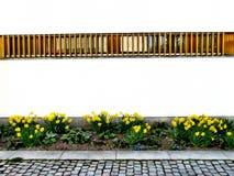 παράλληλοι Στοκ φωτογραφίες με δικαίωμα ελεύθερης χρήσης