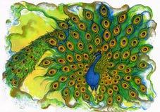 παρέλαση peacock Στοκ εικόνα με δικαίωμα ελεύθερης χρήσης