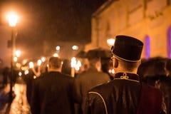 Παρέλαση Salamander Στοκ φωτογραφία με δικαίωμα ελεύθερης χρήσης