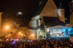Παρέλαση Salamander Στοκ Εικόνες
