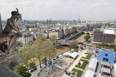 Παρίσι και καθεδρικός ναός της Notre Dame - Παρίσι διάσημο όλων των χιμαιρών, Στοκ εικόνα με δικαίωμα ελεύθερης χρήσης