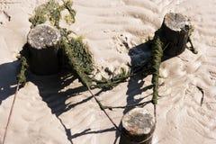 Παραγωγή εδάφους στη Wadden θάλασσα Στοκ Εικόνες