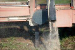 Παραγωγή σκόνης πριονιών σε ένα πριονιστήριο στοκ φωτογραφία με δικαίωμα ελεύθερης χρήσης