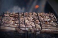 Παραγωγή της σχάρας στη σχάρα Σαββατοκύριακο cookout Μαγειρεύοντας έξω, πικ-νίκ Στοκ Εικόνες