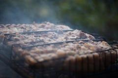 Παραγωγή της σχάρας στη σχάρα Σαββατοκύριακο cookout Μαγειρεύοντας έξω, πικ-νίκ Στοκ Εικόνα