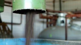 Παραγωγή του πετρελαίου συναπόσπορων, επεξεργασία των ελαιοσπόρων συναπόσπορων, σίτιση των συντριμμένων λινόσπορων συναπόσπορων σ απόθεμα βίντεο
