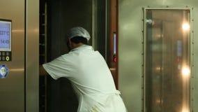 _ Παραγωγή των προϊόντων σιταριού απόθεμα βίντεο