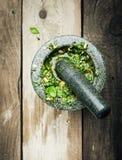 Παραγωγή φρέσκου Pesto στο κονίαμα και το γουδοχέρι Στοκ Φωτογραφία