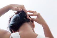 Παραγωγή hairstyle χρησιμοποιώντας το συνδετήρα Στοκ φωτογραφίες με δικαίωμα ελεύθερης χρήσης